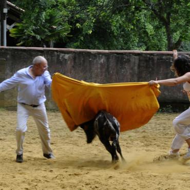 Jeux de vachette - Le ranch labat